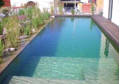 Schwimmteiche und Naturpools